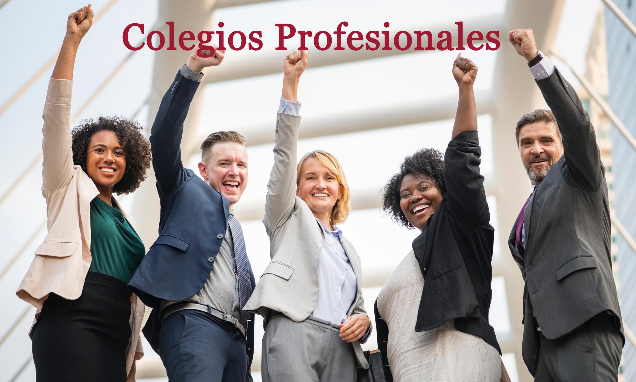 Alta En Colegio Profesional